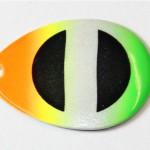 green-tip-rainbow